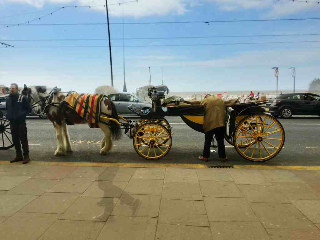 Horse and carriage ride Blackpool sea front