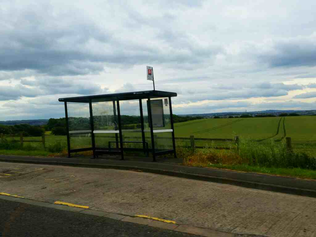 Lone windswept bus shelter east of Blucher on a 685 Carlisle Newcastle bus