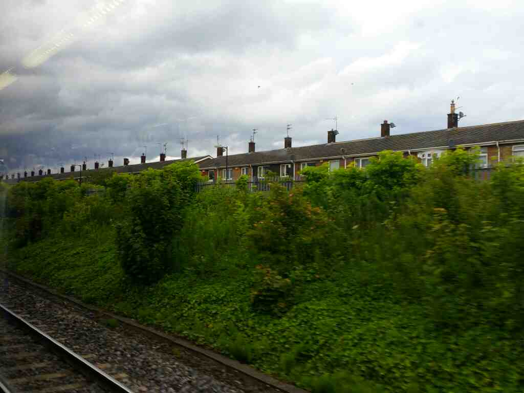 Running alongside Percy Terrace Sunderland on a Northern Rail Middlesbrough to Newcastle train