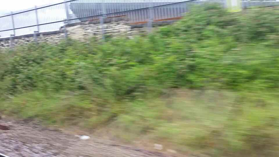 Between Monkwearmouth and Stadium of light on a Northern Rail Middlesbrough to Newcastle train