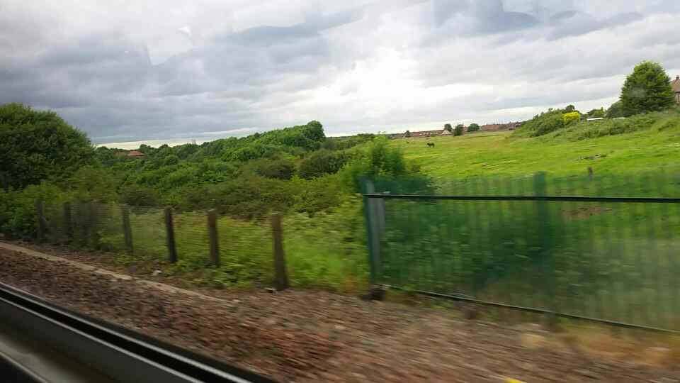 Heading away from Brockley Whins on a Northern Rail Middlesbrough to Newcastle train