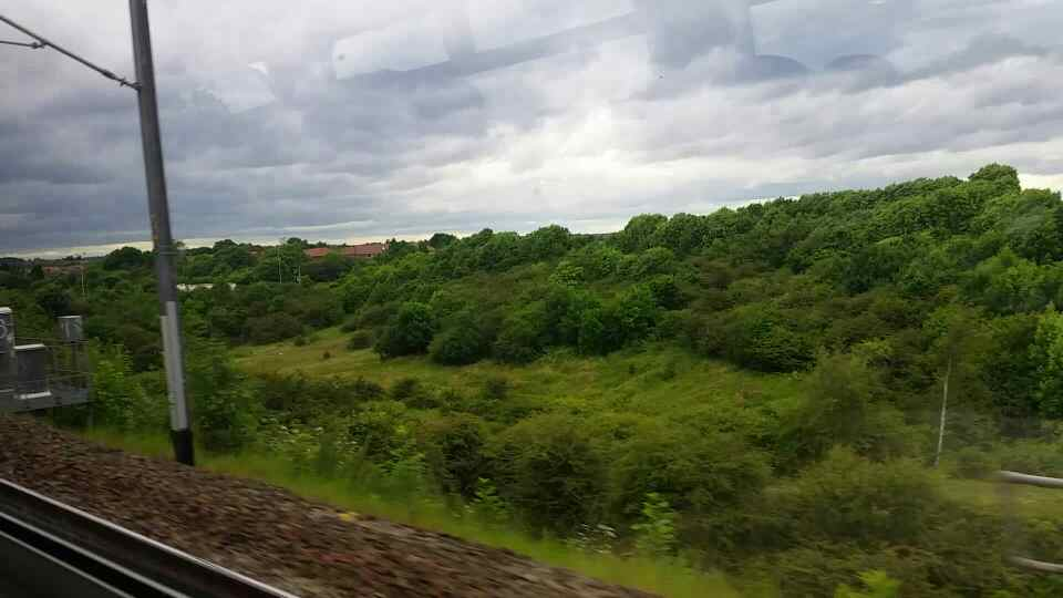 Between Brockley Whins and Fellgate on a Northern Rail Middlesbrough to Newcastle train