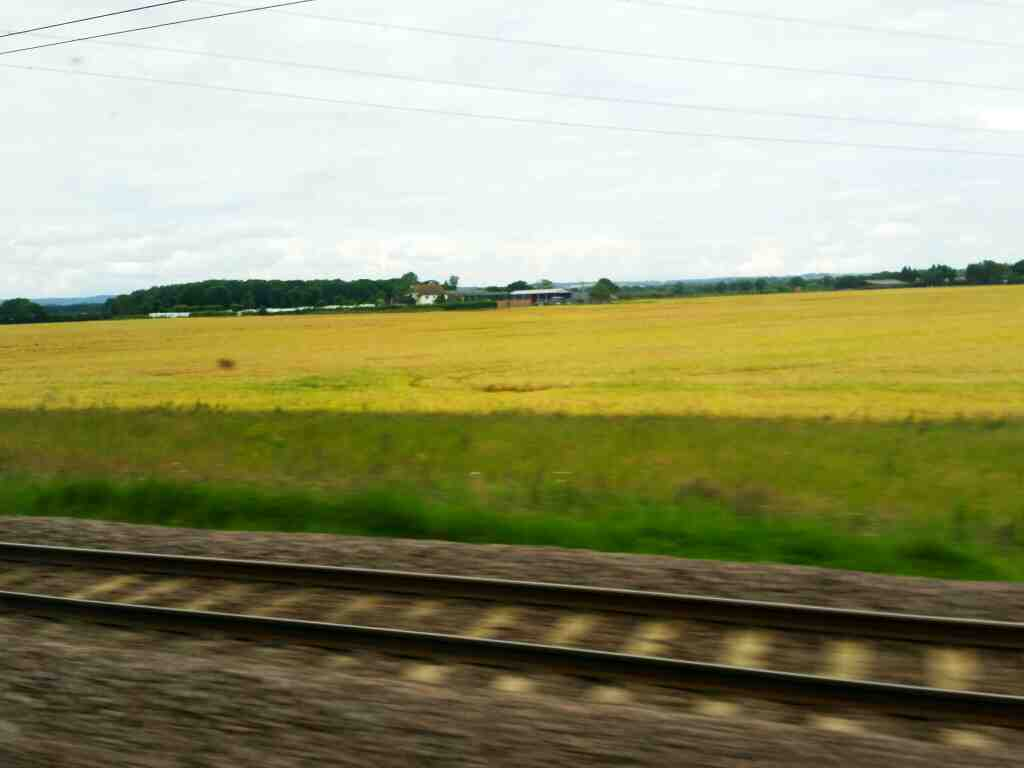 Passing the South Carolina Farm and Caravan site on a London to Edinburgh train